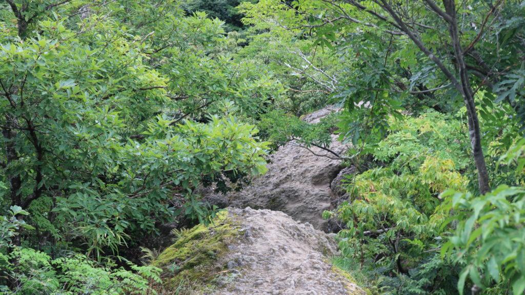 正規ルートの岩肌